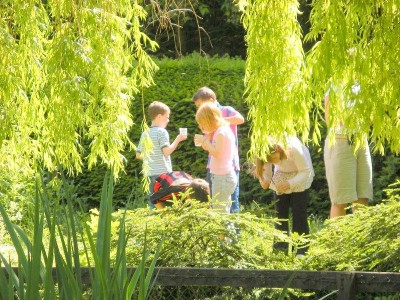 garden pond area2
